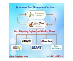 Amazon, eBay, Walmart Product Listing Services