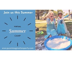 Party Characters | Virtual Summer Camp | Pure Imagination Party Company