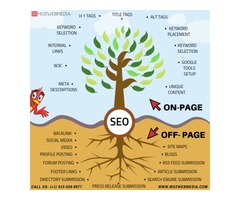 Affordable SEO Services Chicago