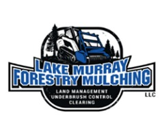 Forestry Mulching and Land Clearing Services for Property Owners in SC
