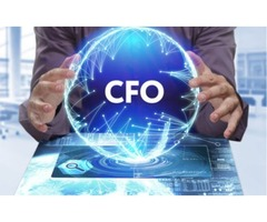 How can a Virtual CFO Service help your Business?