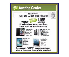 Pay Less for Online Auctions