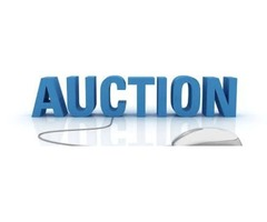 Government auctions = Great buys