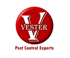 Pest Control Managment Services in San Diego, CA