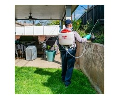 Experienced Company for Pest Control