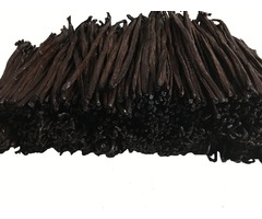 Vanilla Beans Grade A: Necessary Ingredient for Preparing Vanilla Extract at Home