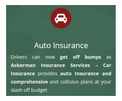 Car insurance service at Ackerman Insurance Services