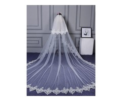 Delicate Two-Layer Lace Edge Wedding Veil