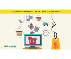 E-Commerce Websites: DIY or Leave It to the Pros?
