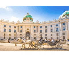 Vienna: Explore the nature all over the place