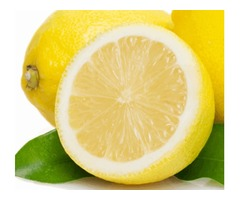 Buy Lemons in Bulk from Mexico Based Lemon Suppliers