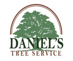 Daniel's Tree Service