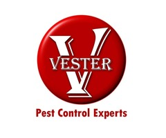 Pest Control Management Services | Vester Pest Control