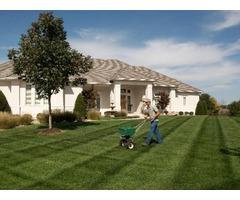 Best Lawn Fertilization Services in Celina