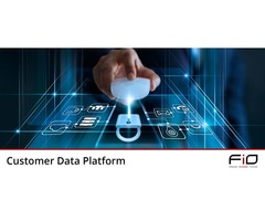 Best Customer Data Platform - Group FiO