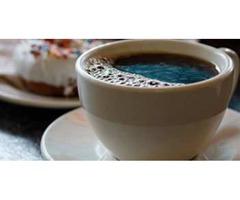 Fair Trade Coffee Maumee | Georgettes