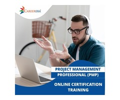 Professional PMP Certification Training Course