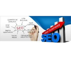 #1 SEO company Company that delivers professional SEO services