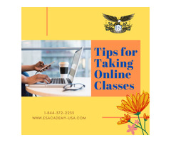 E & S Academy | Tips for Taking Online Classes