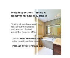 Mold Inspections, Testing & Removals Fort Collins Colorado