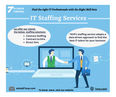 IT Staffing Services Company USA