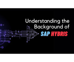 Understanding the Background of SAP Hybris