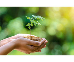 Attain ISO 14001 Environmental Management Certification with Us!