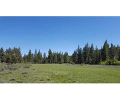 Best Vacant Land for Sale in the USA with 100% Percent Money Back Guarantee - APXN Property