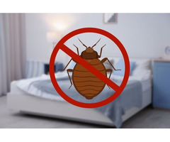 Get A Bed Bug Control Service at The Best Price