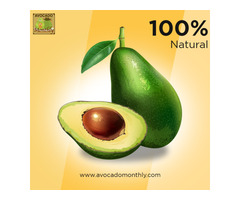 Get Hand-Picked Certified Organic Avocados From Avocado Monthly