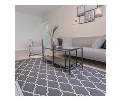 Best-Class Carpet Flooring Installers in Mesa | HomeSolutionz