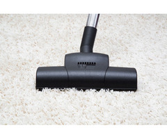 Avail The Great Carpet Cleaning Service