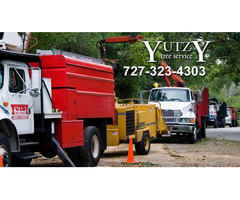 Yutzy Tree Service - St. Petersburg, FL