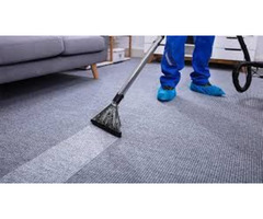 Benefits of our Carpet Cleaning Service in Sarasota, Florida