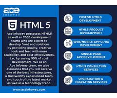 HTML 5 Development Services   Ace Infoway