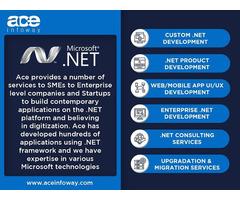 .Net Development Services   Ace Infoway