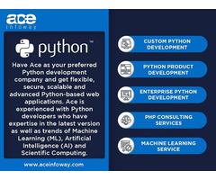 Python Development Services   Ace Infoway