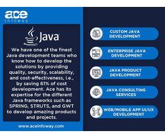 Java Development Services   Ace Infoway