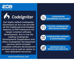 CodeIgniter Development Services   Ace Infoway
