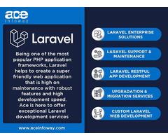 Laravel Development Services   Ace Infoway