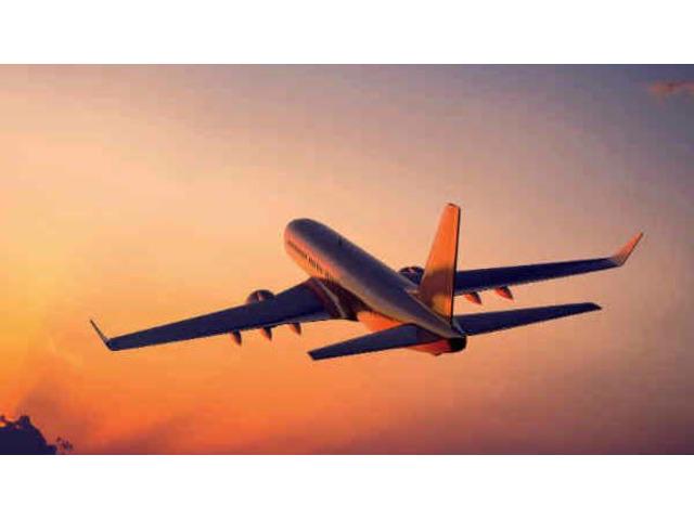 Book Cheap One Way Flights on MyFlightSearch.com | free-classifieds-usa.com