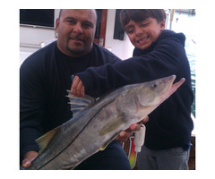 Encounter Miami Beach Deep Sea Fishing Experience Right Away