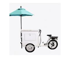 Ice cream Bike in USA   Start your business