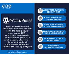 Hire a WordPress Developer   WordPress Development   Ace Infoway