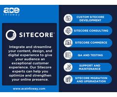 Sitecore Development Services   Ace Infoway