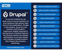 Hire a Drupal Expert   Ace Infoway