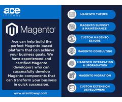 Magento eCommerce Development Services   Ace Infoway