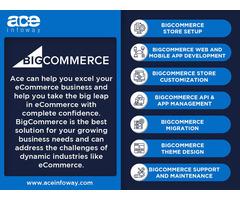 BigCommerce Development Services   Ace Infoway