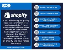 Shopify Store Development Services   Ace Infoway