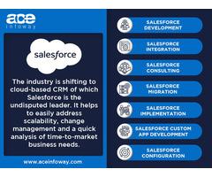 Salesforce SaaS Platform Development   Ace Infoway